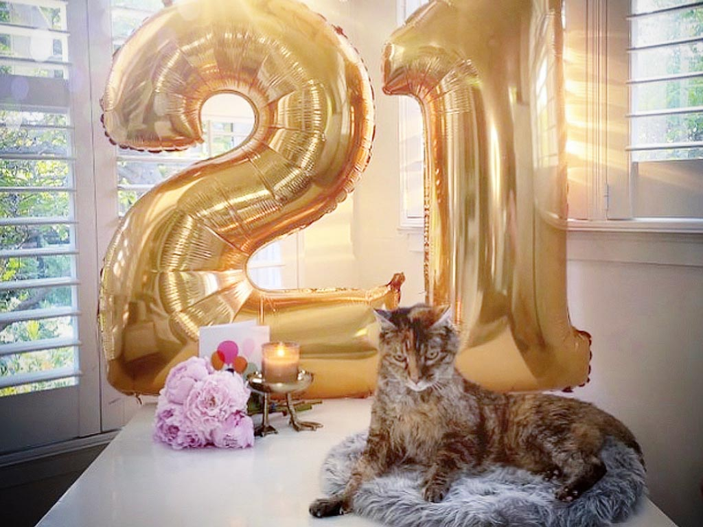Tubby 21st Birthday