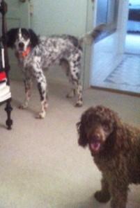 Beanie and Jack